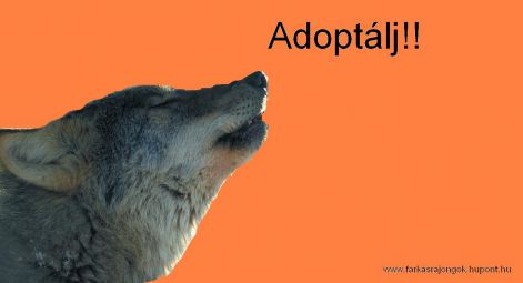 adoptalj.jpg